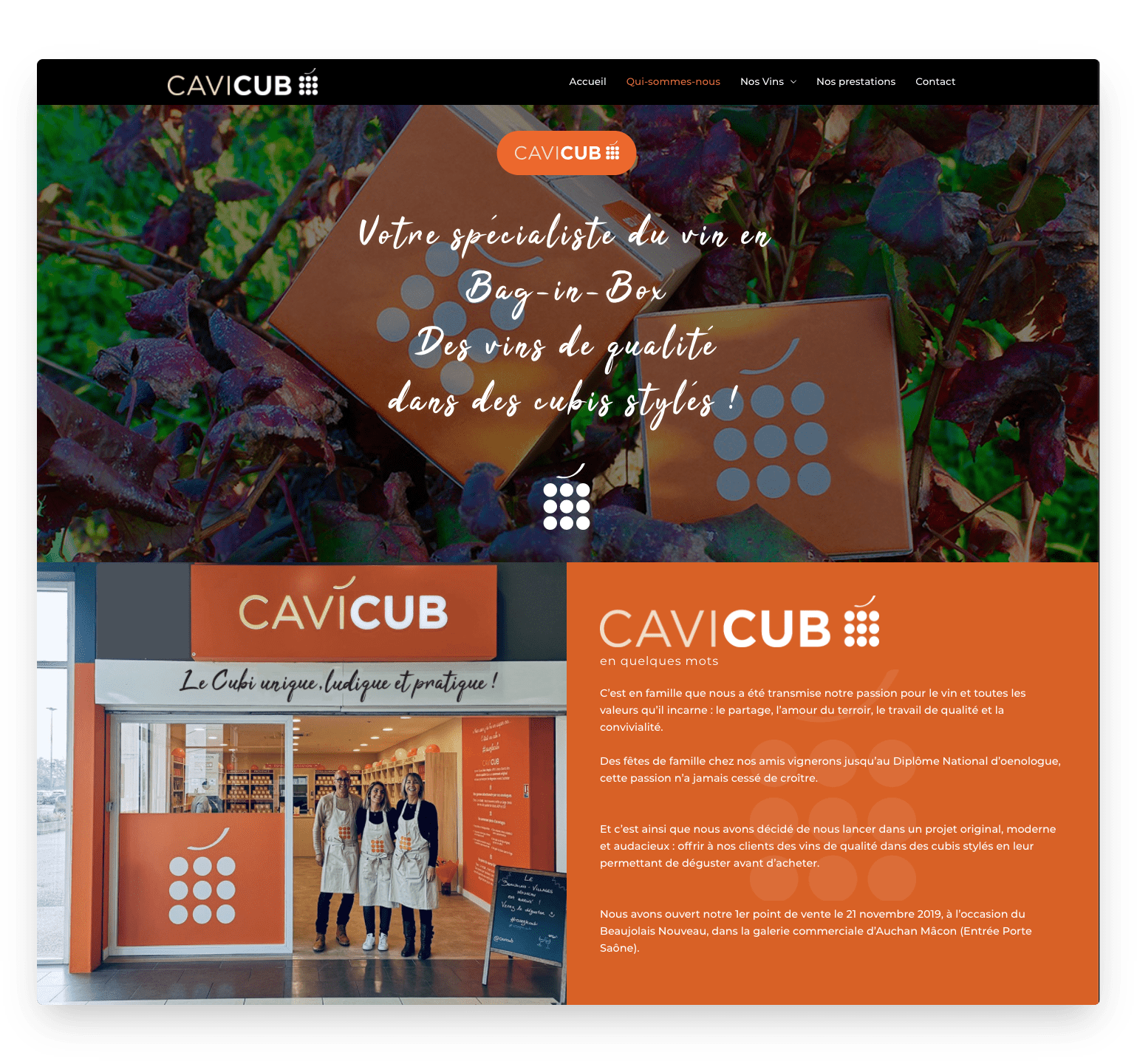 création site internet cavicub.com